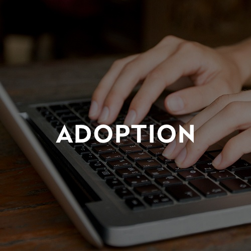 blog_images_adoption_1.jpg